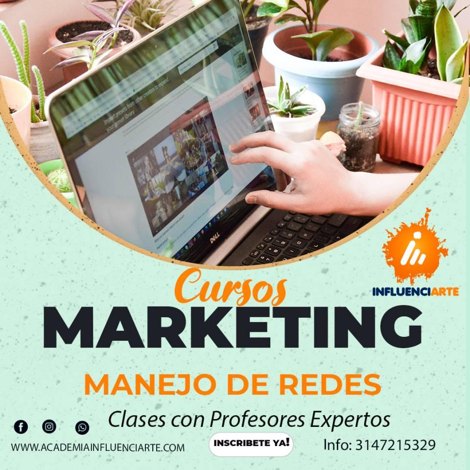 Curso de Marketing Digital: Manejo de Redes Sociales. lo que Aprenderás. | amarilla.co
